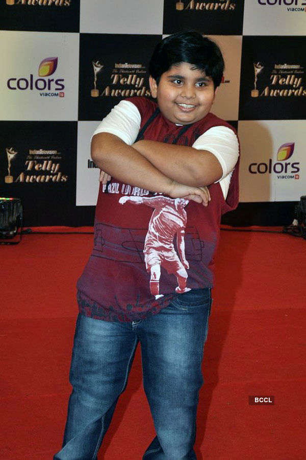 Indian Telly Awards 2014