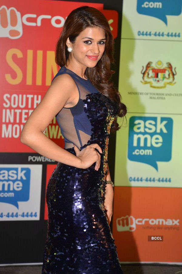 SIIMA Awards '14
