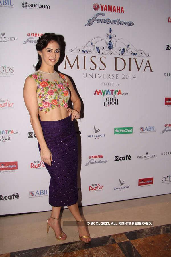 Sundowner Party: Miss Diva Universe 2014