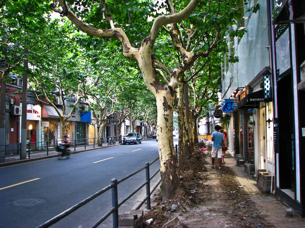 French Concession Shopping