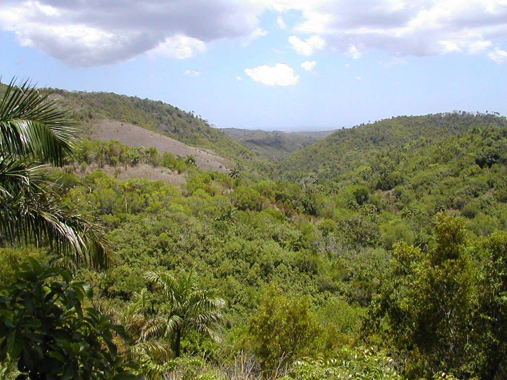 Go hiking in Las Terrazas