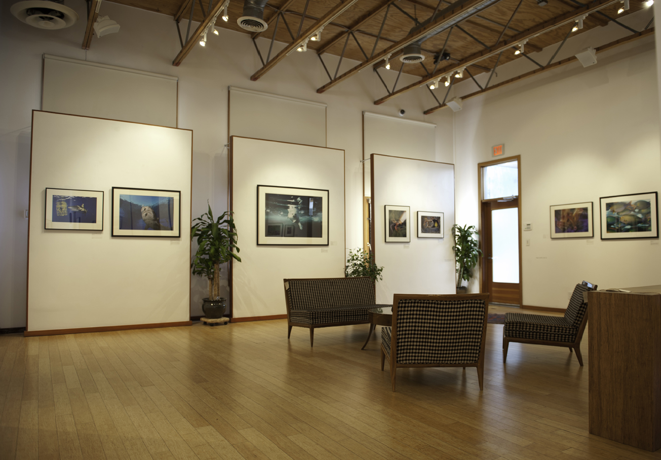 The G2 Gallery