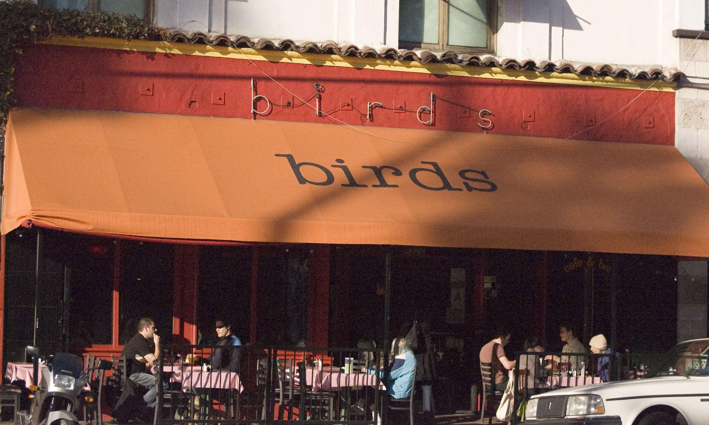 Birds Café