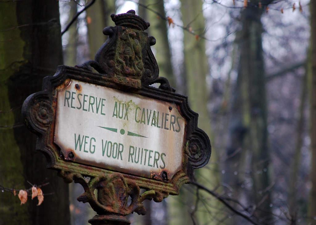Bois de la Cambre & Foret de Soignes