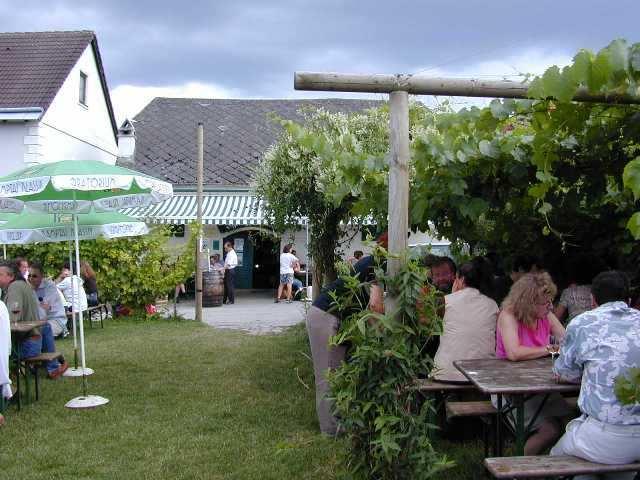 Wine Taverns (Heurigen)