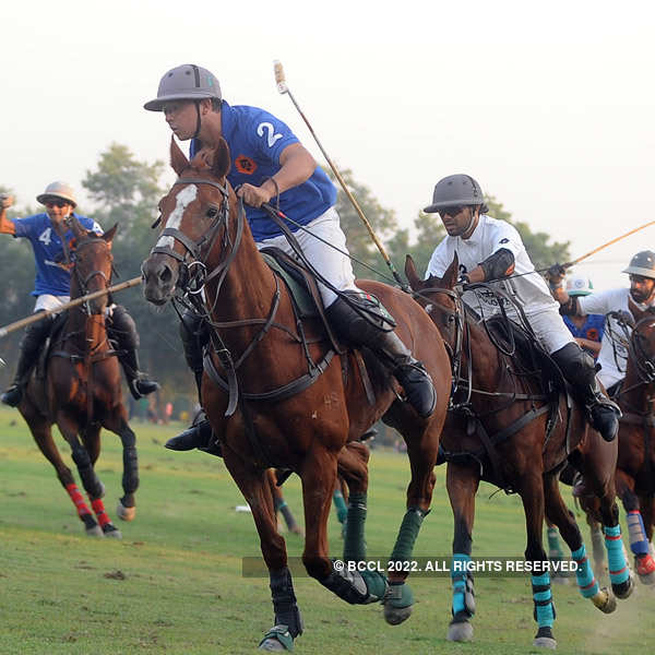 Cavalry Gold Cup 2014