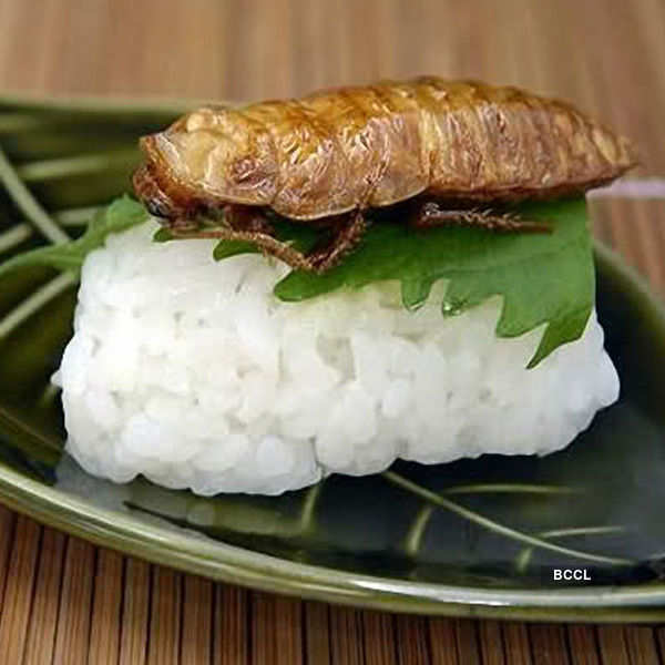 Bizarre food across the world