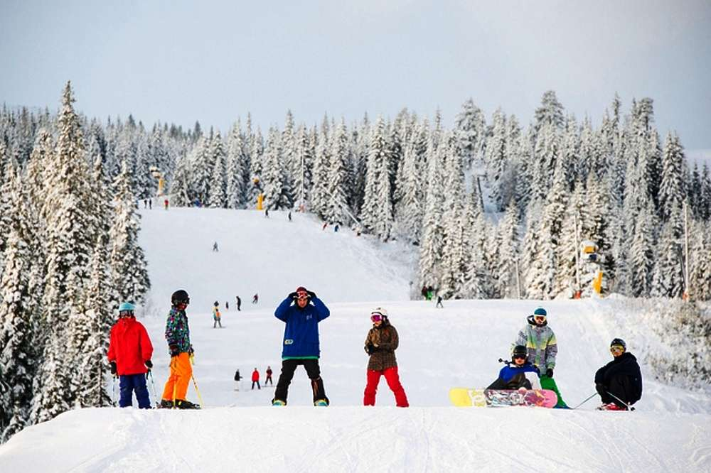 Winter Activities   Winter Adventure   Things to do in