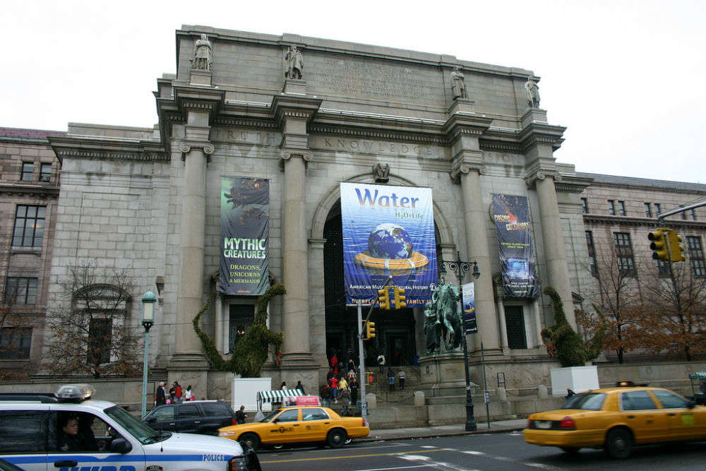 Night at the Museum in NYC