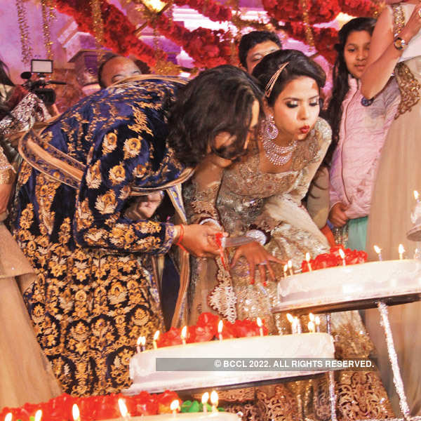 Shrey and Shaloo's wedding reception