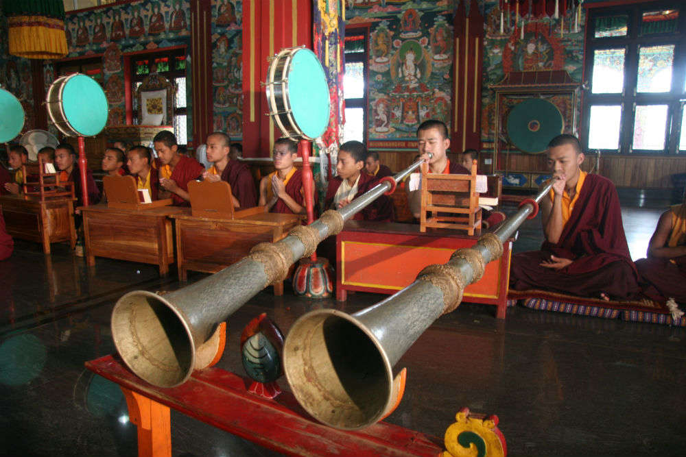 Buddhist monks in prayer