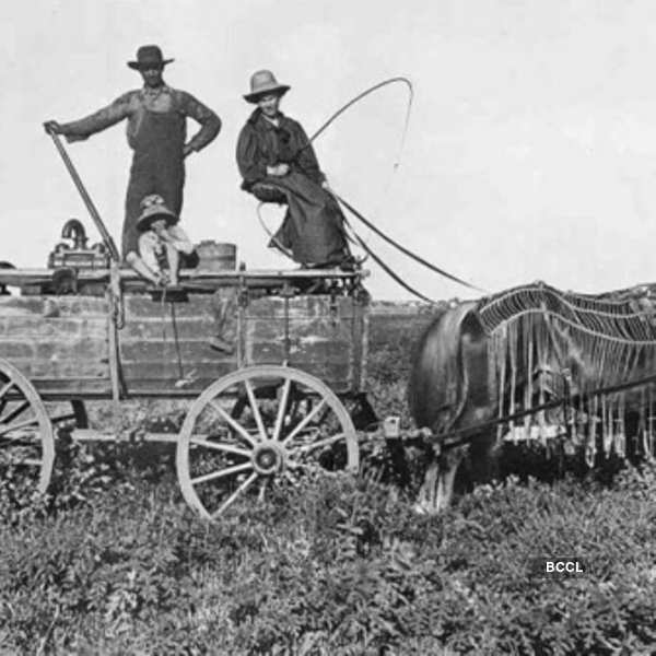 Water wagons are usually used for farming