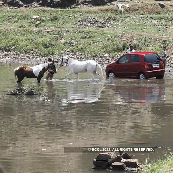 Residents wash their horses and car