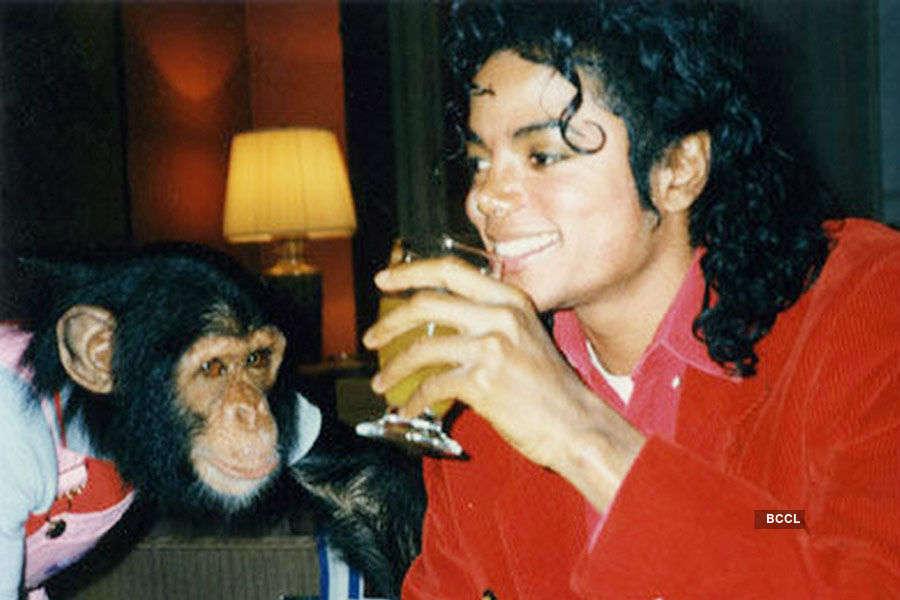 King of Pop Michael Jackson had a baby chimpanzee
