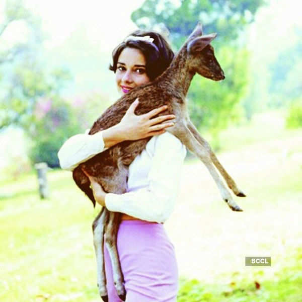 Fashion icon Audrey Hepburn had a special place for her adorable pet fawn