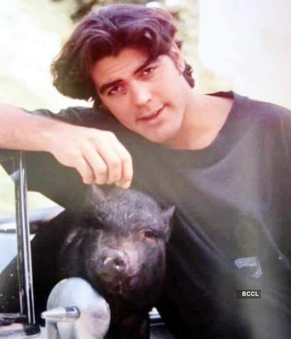 Hollywood actor George Clooney once owned a 300-pound pig