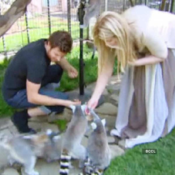 Comedian Kirstie Alley owns a lemur