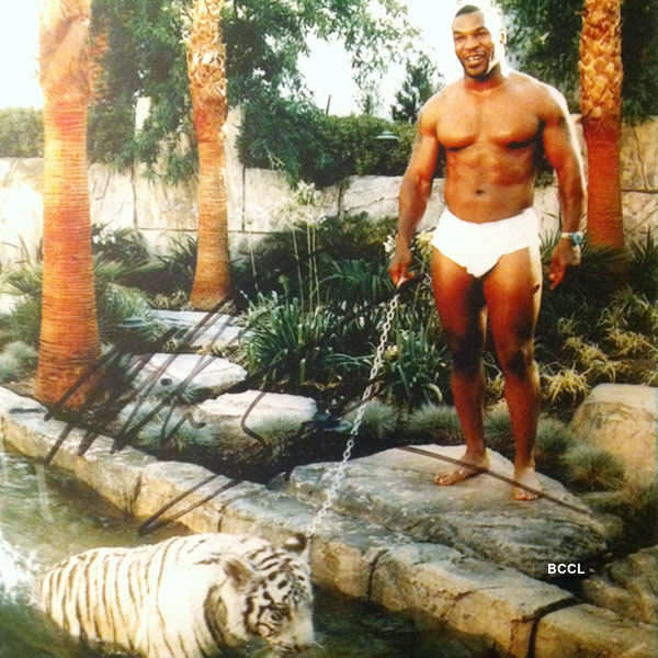 Boxer Mike Tyson had a tiger as a pet