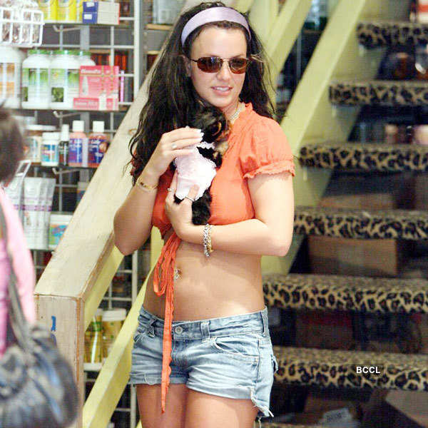 American Singer Britney Spears used to keep three Chihuahuas as pet