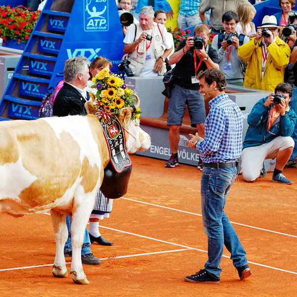 Roger Federer owns a cow named Desiree