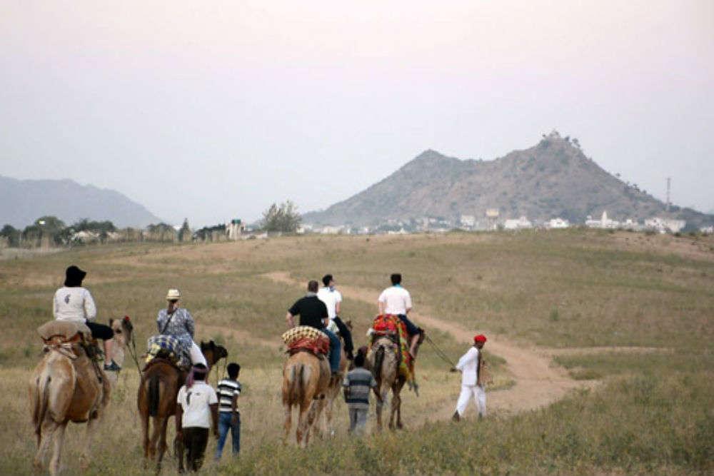 Take the Camel Safari