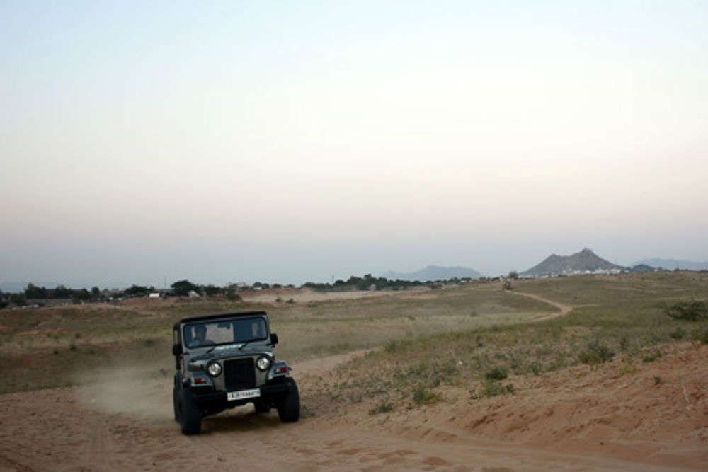 Jeep safari in Pushkar