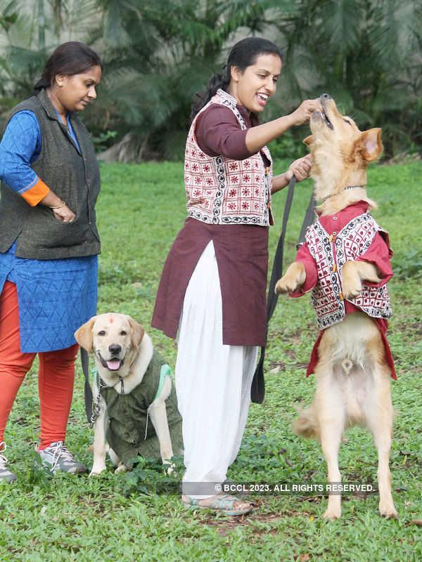 'Dog Marathon' in Bengaluru