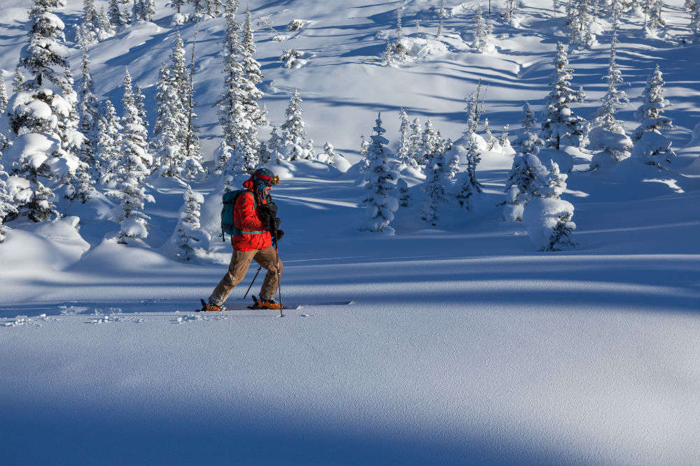Don't miss snowshoeing and winter hiking