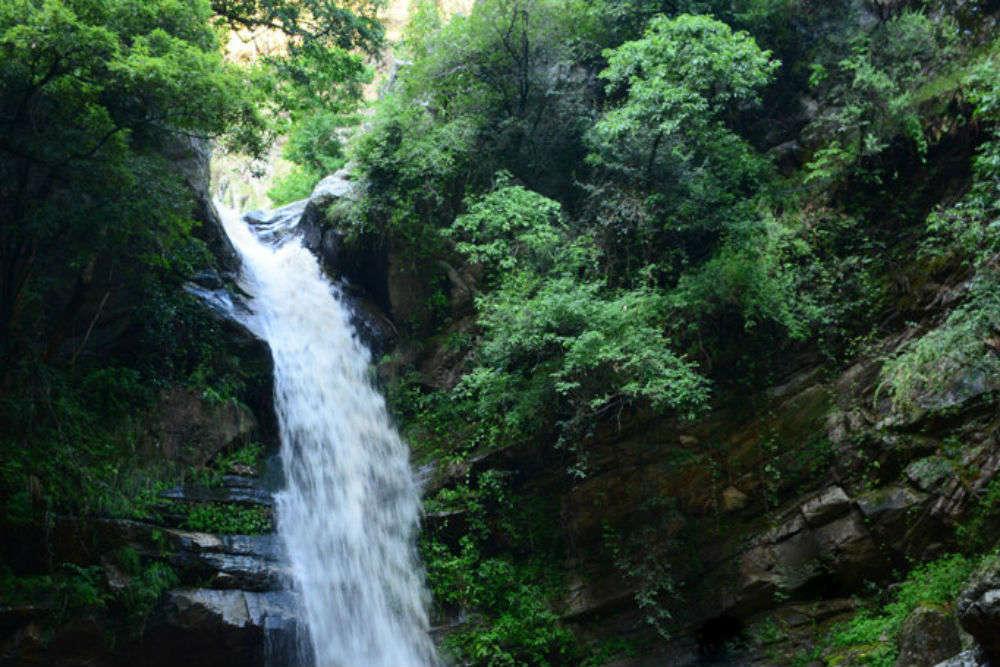 Nature trail and bird watching at Bhalu Gaad Waterfalls