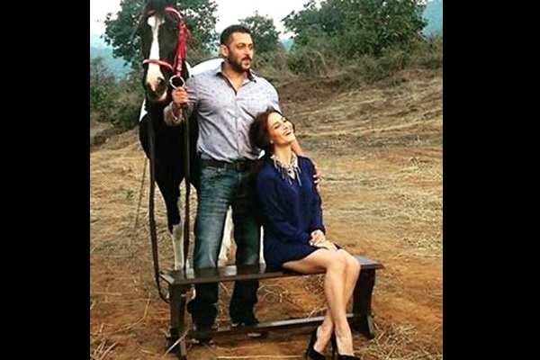 Salman And Elli