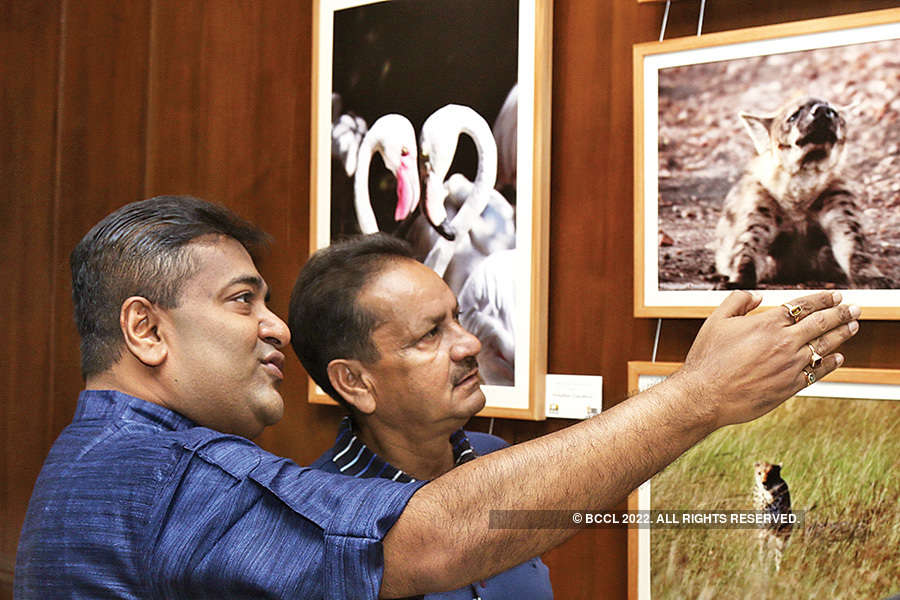 Wildlife photographic exhibition