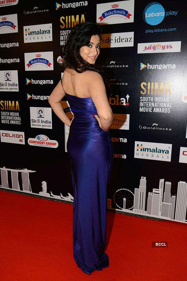 SIIMA 2016: Red Carpet