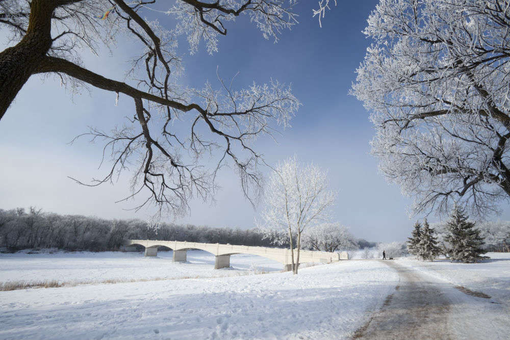 Experience Winnipeg's winter wonderland