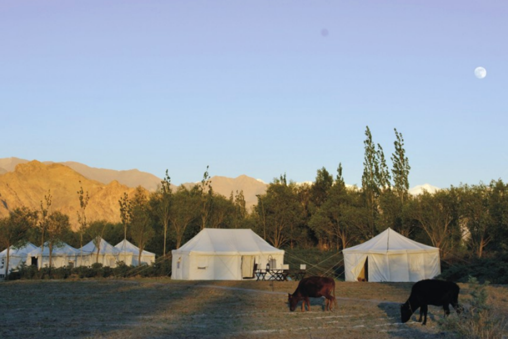 Tsermang Eco Camp