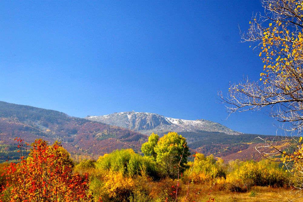 Mt. Vitosha