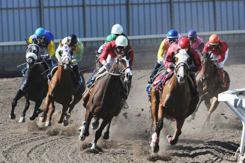 Northlands Racetrack