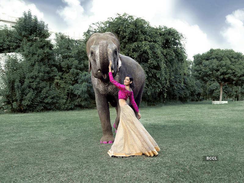 Naveli Deshmukh's new photoshoot will leave you spellbound