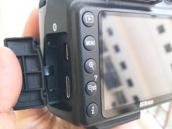 Nikon D5600 Download Pictures