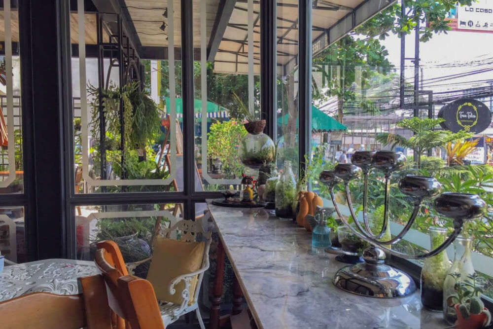 Tree Tales Café