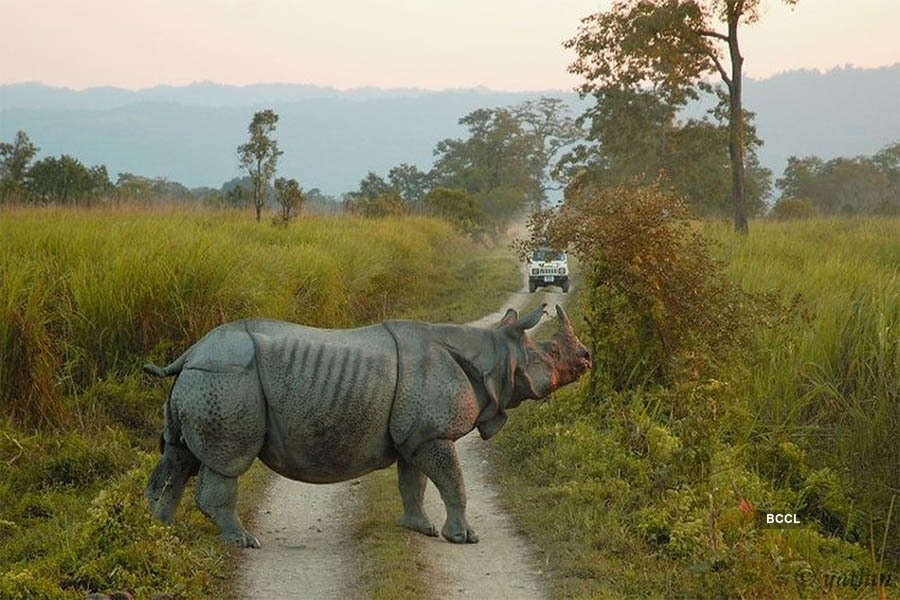 Try these 30 amazing adventure trips within India