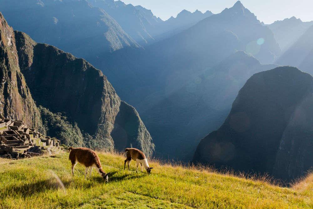 Luxury Machu Pichu by train