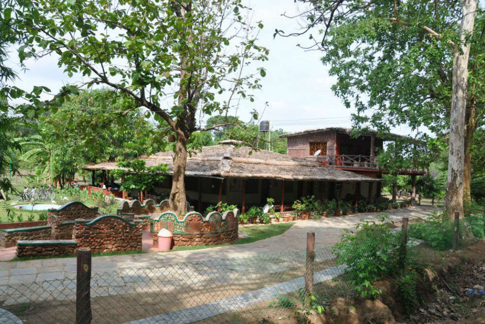 Dandeli Shikra Jungle Resort
