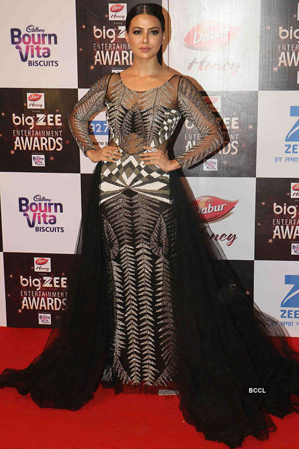 Big Zee Entertainment Awards 2017