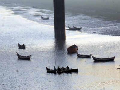narmada river: Latest News, Videos and narmada river Photos | Times of India