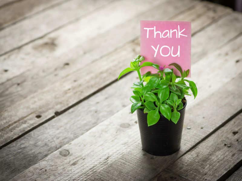 Inculcate Gratitude