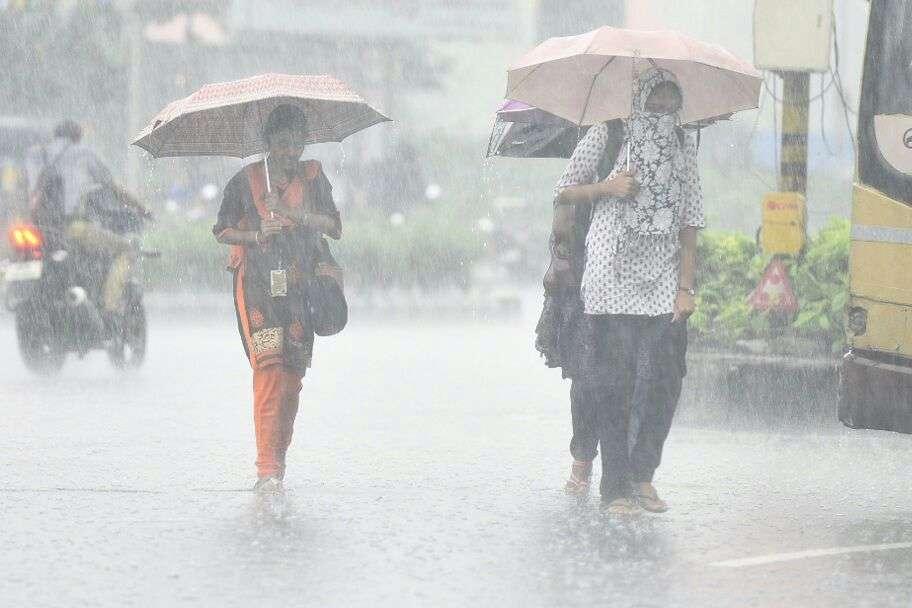 Image result for TN RAIN