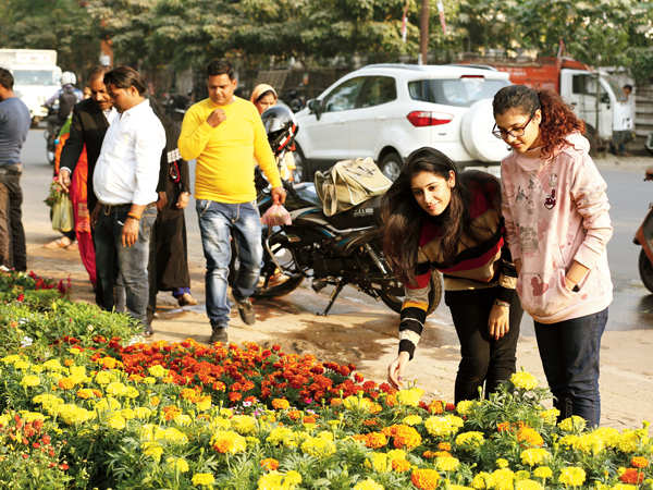Increase in the AQI makes Lucknowites go green (BCCL/ Aditya Yadav)