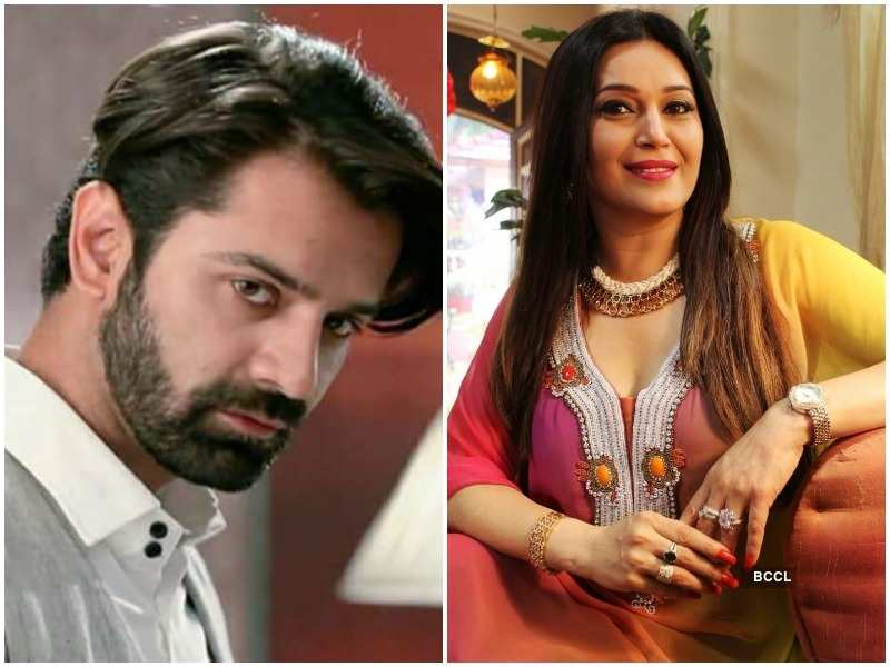 From Nikki Aneja to Barun Sobti, TV actors who made a comeback in 2017