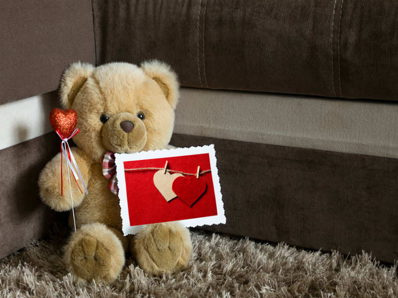 Image result for Teddy Day