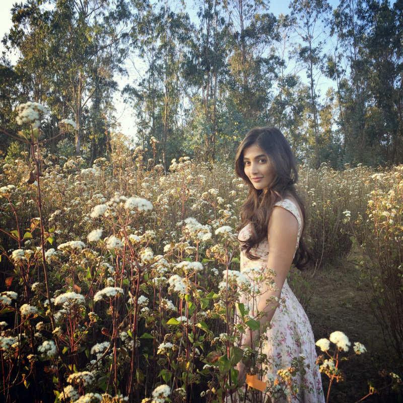 Pooja Hegde Hot Images xxx